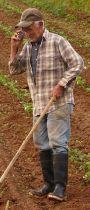 Freiheit eines Bauernmannes